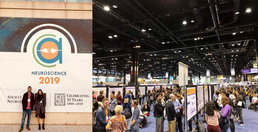 SFN Congress 19-23 Oct, Chicago